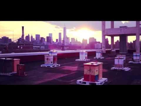 B°11 - Brooklyn