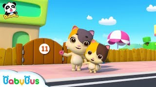 Baby Kitten Buys Donuts for Younger Brother | Kids Safety Tips | BabyBus