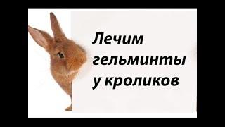 Профилактика глистов(гельминтов) у кроликов