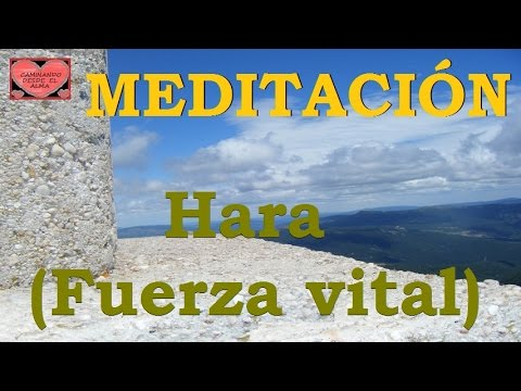 MEDITACIÓN. Hara ( Fuerza vital )