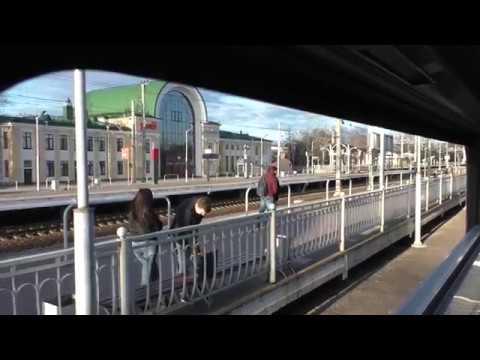 От станции Зеленогорск до о.п. Удельная из окна электропоезда ЭР2К-930