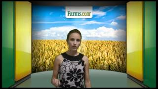 Farms.com Grain Market Report:  Grain Prices Retreat On Outside Market News.