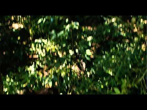 アポカリプト(字幕版) - Trailer