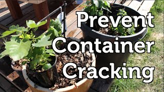 Prevent Garden Containers from Cracking Over Winter -- Fast Garden Tip