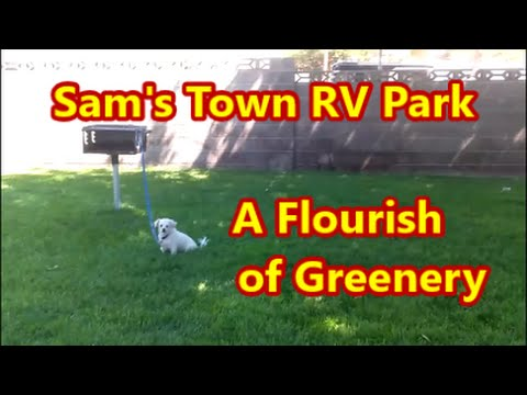Sam S Town Rv Resort Day 2 Part 2 Sights In The Park