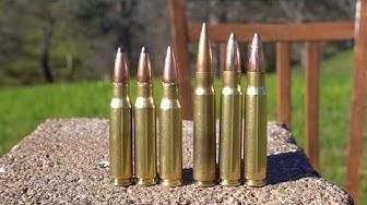 .308 vs 8mm Mauser