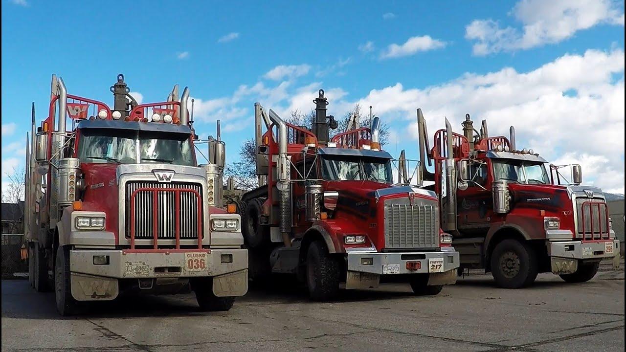 b c logging trucks 23 kenworth peterbilt western star trucks hauling through a small city  [ 1280 x 720 Pixel ]