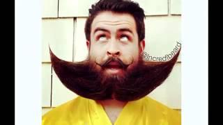Борода   песня про бороду