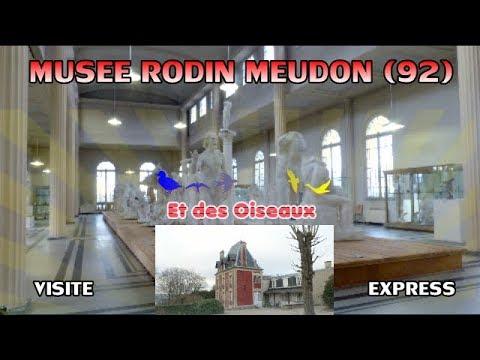 Musée Rodin (92) France, visite et oiseaux