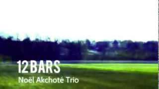 Twelve Bars: 04 Tortoise (noël Akchoté)