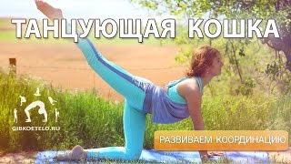 Танцующая КОШКА / Упражнения для позвоночника