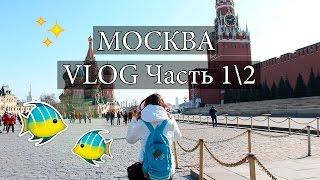 МОСКВА / ГУМ / МОСКВАРИУМ / VLOG Часть 1\2