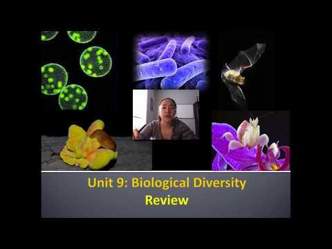 Unit 9 Biological Diversity Review Video