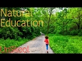 unschool home school how we naturally educate our kids natural gentle attachment parenting