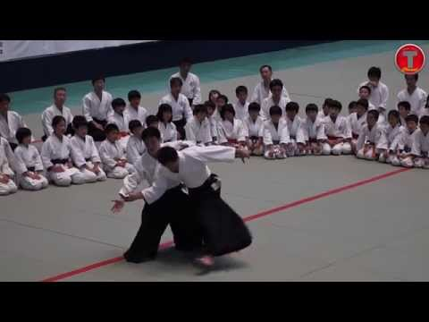 Great Aikido Tecniques III in HD Slow Motion