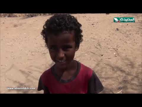 تقرير : الجهل وعمالة الاطفال يحرم اطفال تهامة من التعليم (15-2-2019)