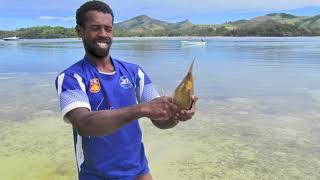 2018 vanuit Nieuw-Zeeland naar Fiji en New Caledonia