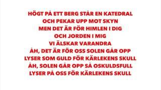 Danny Saucedo - För kärlekens skull (Lyrics)