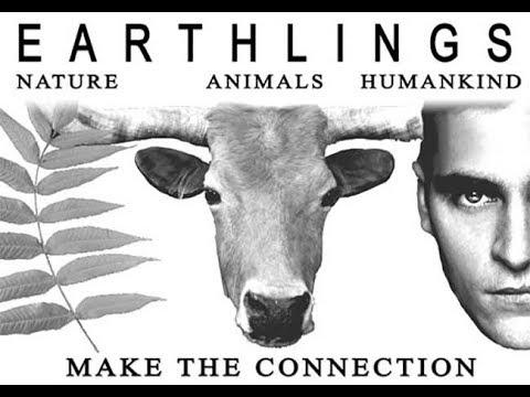 Vegetarian documentaries - documentary film