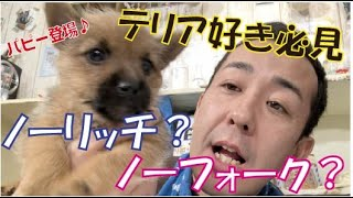 番組提供:ペットライン株式会社 http://www.petline.co.jp/ 可愛すぎる...