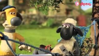 ''Баранчик Шон'' на телеканалі ''Піксель''