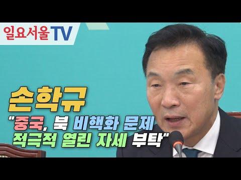 """손학규 """"중국, 북 비핵화 문제 적극적 열린 자세 부탁"""""""