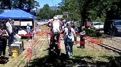 Fathers Day Tractor Show Pottsville Oregon