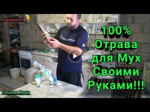 100% Отрава для мух своими руками