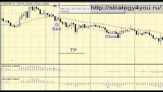 Стратегия форекс Рентген Элдера_ - Видео(, 2013-05-07T11:40:53.000Z)