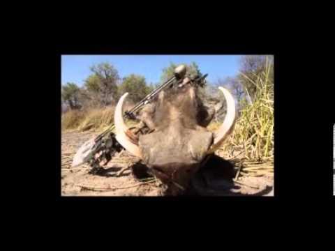 Bogenjagd in Namibia - Bowhunting in Namibia