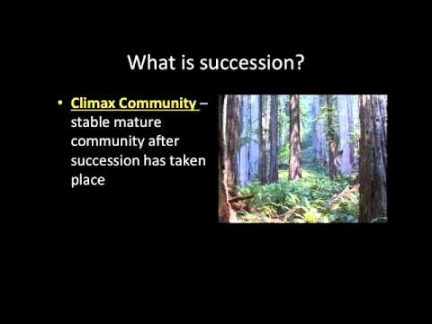 Video Lecture: 2-3 Succession and Biomes