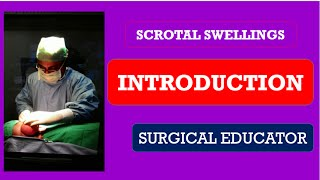 Scrotal Swellings  Introduction
