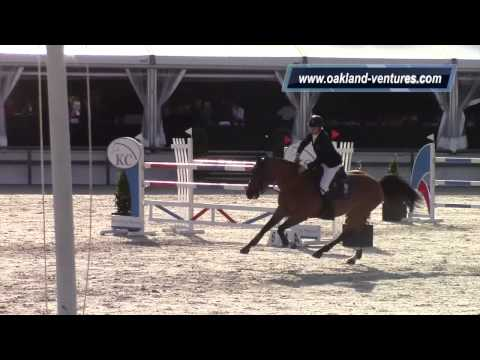 Windbreaker & Philip Carey: CSI2*  1m45 Small Grand Prix - 2nd Place