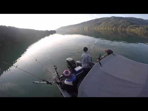 Merwin lake kokanee