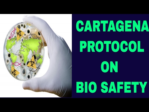 L-97 CONVENTION ON BIOLOGICAL DIVERSITY (CBD) AND CARTANGENA PROTOCOL