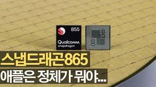 스냅드래곤 865 유출 애플은 정체가 뭐야...