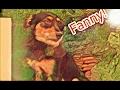 Fanny! - A FUGA DA FANNY! - GABRIEL RN