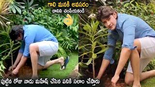 Mahesh Babu Planting Trees On His Birthday | Green India Challenge | Life Andhra Tv