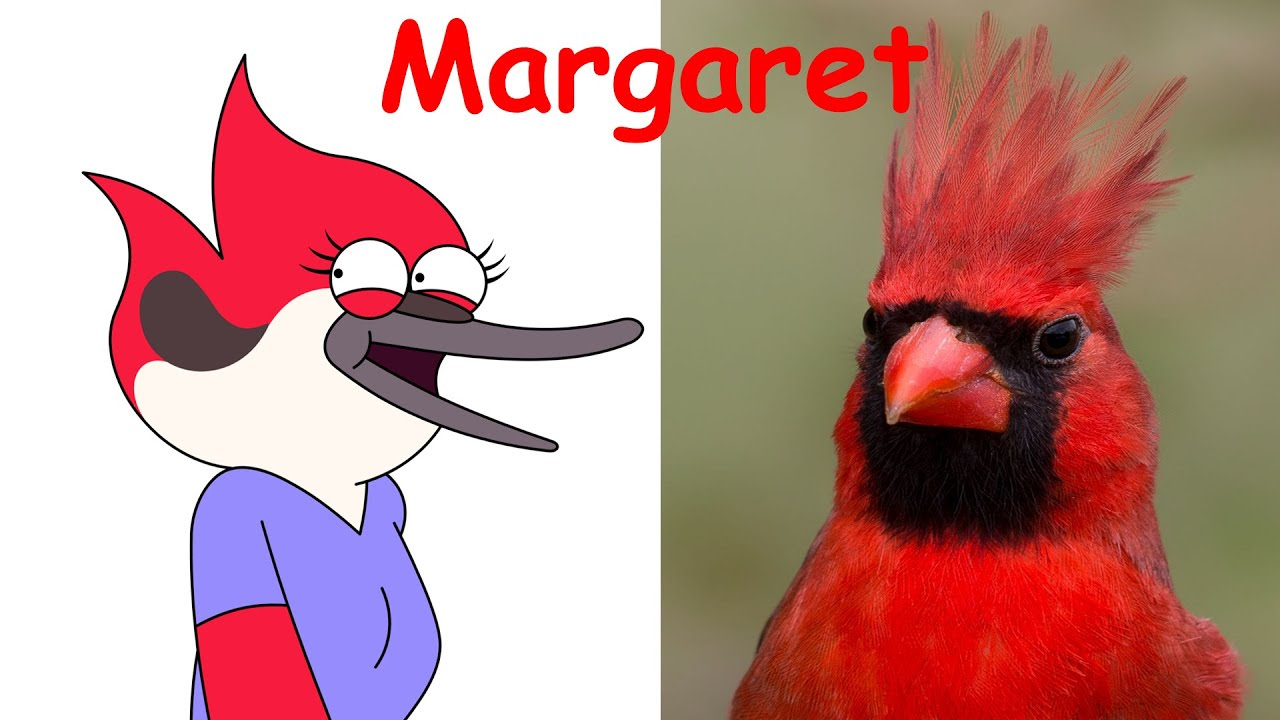 Regular show red bird