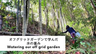 VLOG オフグリッド畑の水やり Watering our off grid garden.