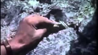 Asbestos has Unique Qualities 1960 Cassiar Asbestos Mine