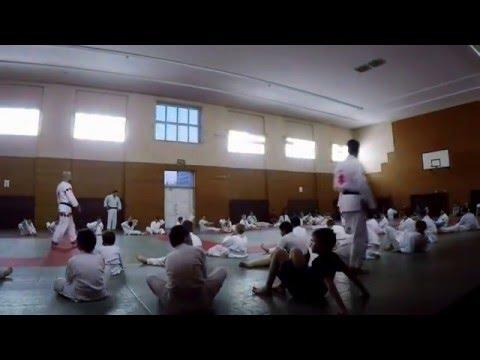 Judo / VORON