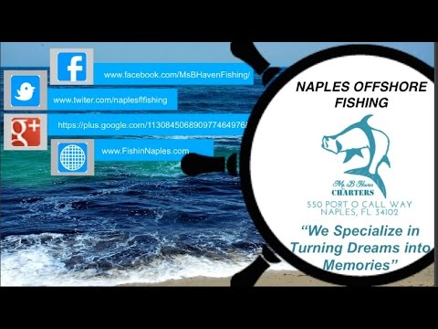 Offshore Fishing Charters - Deep Sea Fishing In Naples Florida