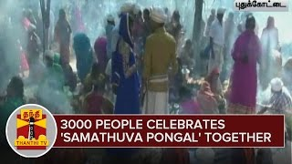 3000 People Celebrates