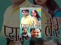 Pyar Mein Tere || प्यार में तेरे  || Haryanvi Full Comedy Romantic Movies Film