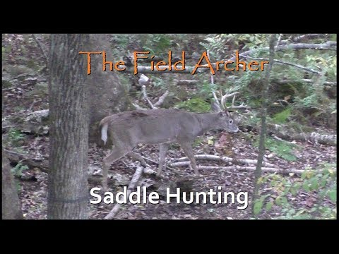 BOWHUNTING: Saddle Bow Hunting