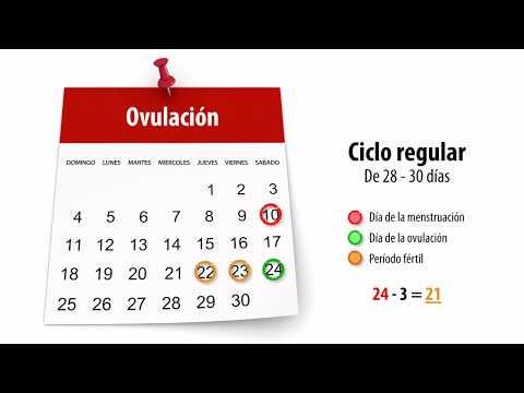 Como saber cuales son los dias fertiles y de ovulacion