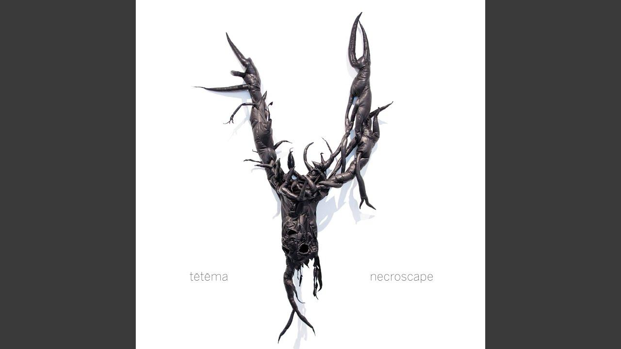 """VA BlackonBlack logo Drum Head 14/"""" GOATWHORE"""