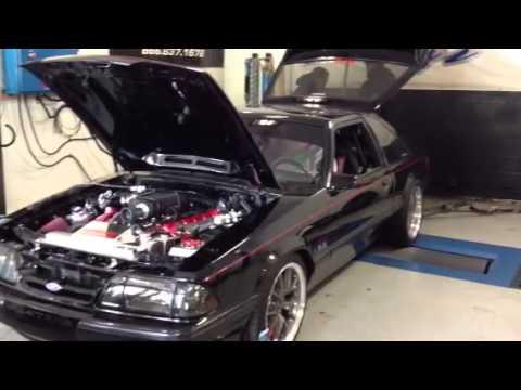 Terminator Cobra Stock Dyno