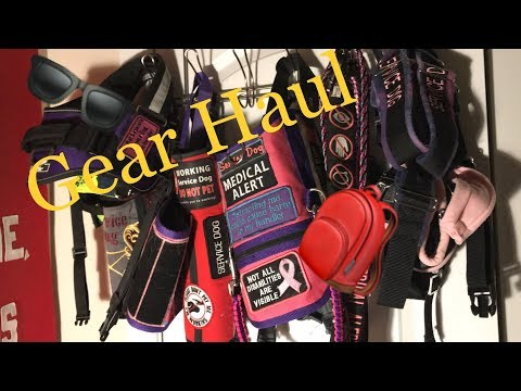 GEAR HAUL || ALL OF OUR GEAR || FEBRUARY 4TH, 2019